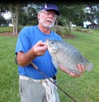 Randy DiSanto President Elect 2 lb Tilapia - On Fly Rod