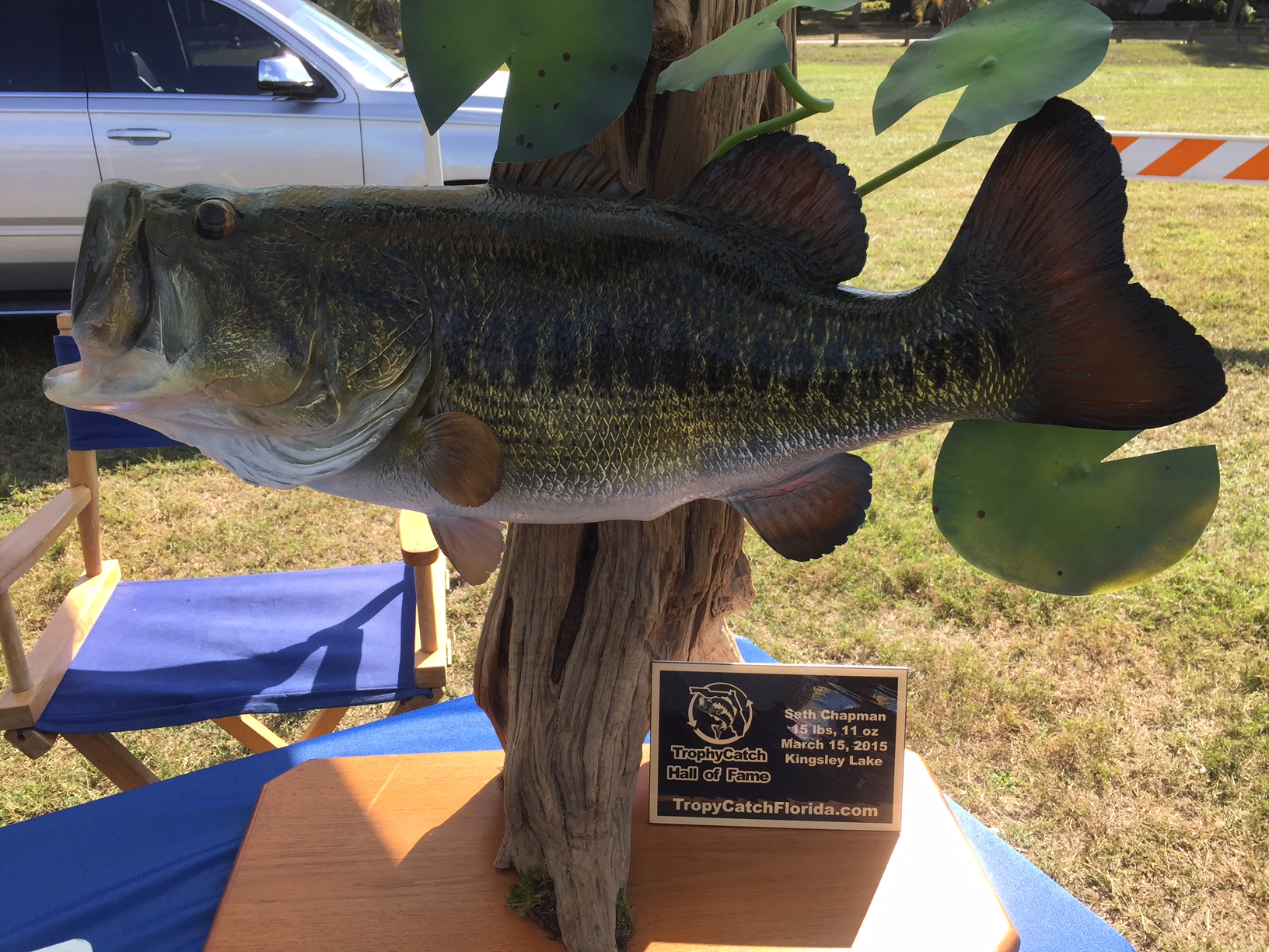 Day 2 bps open at lake harris and the villages for Freshwater fishing in massachusetts