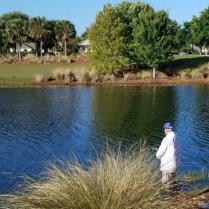 Poinciana Pond